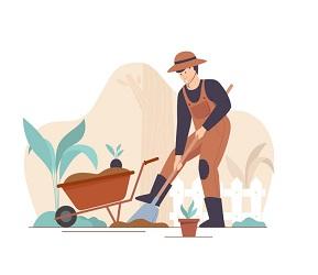 Garden Services